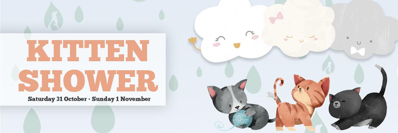 Kitten-Shower-web